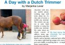 A day with a Dutch Trimmer I; De dagelijkse routine